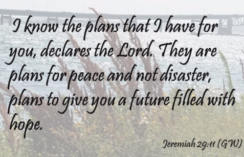 Jeremiah 2911